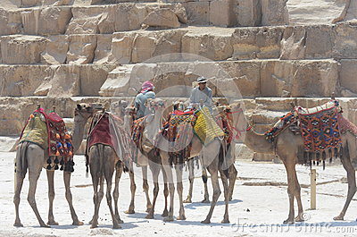 Pyramids Cairo Egypt Editorial Photography