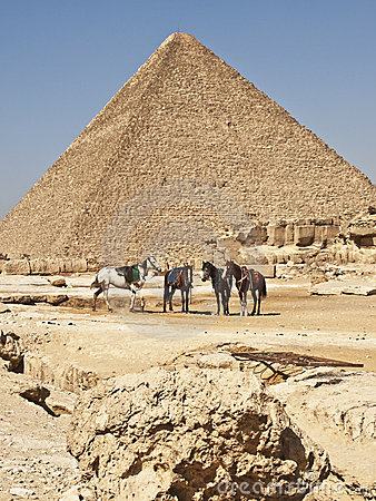 Pyramids in cairo egypt and hoses