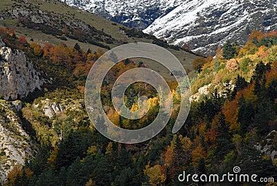 Pyrenees in autumn