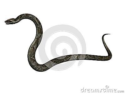 Python illustration