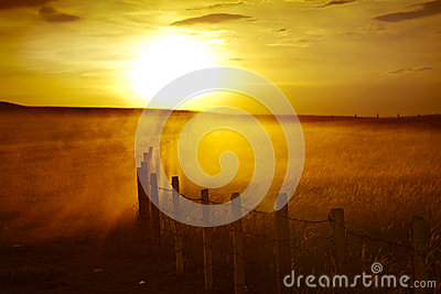 Qatar desert sunset