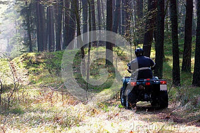Quad in forest