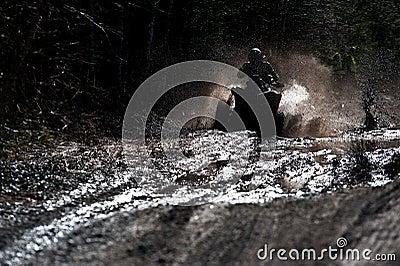 Quad in the mud
