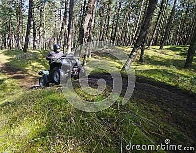 Quad speeding in forest (ATV)