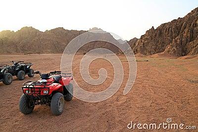 Quads trip in Sinai mountains