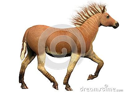 Quagga-ausgestorbenes Tier