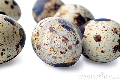 Quail eggs closeup isolated on white