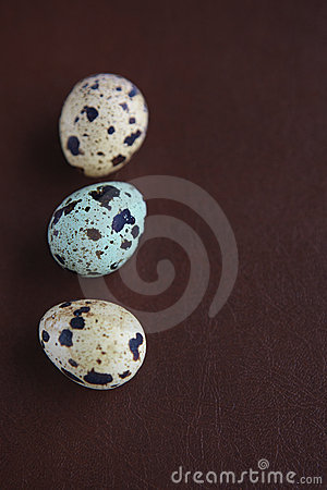 Quail eggs on leather background