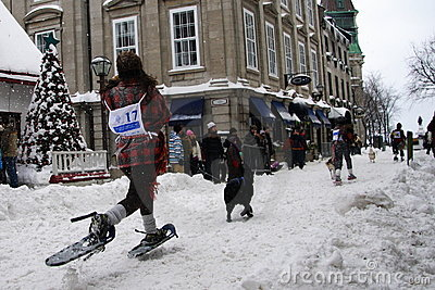 Quebec Carnival: Snowshoeing Race. Stock Photo - Image: 7985960