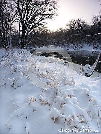 Queda de neve fresca em Illinois