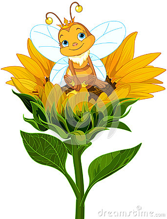 Free Queen Bee On Sunflower Stock Photo - 97263860
