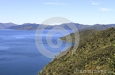 Queen Charlotte track around Marlborough Sounds