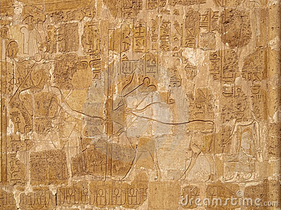 Queen Hatshepsut and sacred cow relief