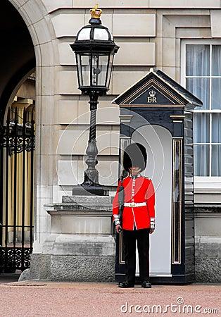 Free Queen S Guard, Buckingham Palace, London Stock Photo - 23957270