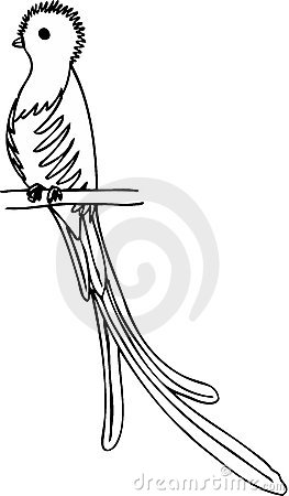 The Quetzal Bird Clip Art