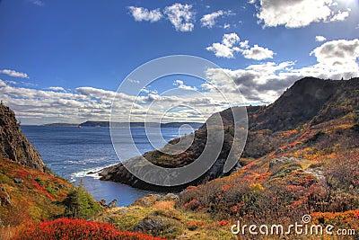 Quidi Vidi Cove Newfoundland