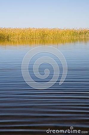 Quiet autumn lake