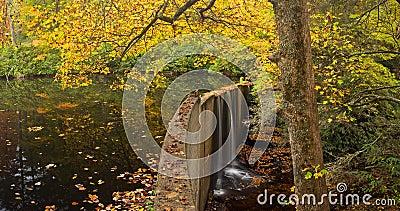 Quiet Mountain Lake in Autumn