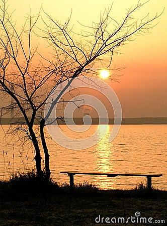 Free Quiet Reflection Stock Image - 2450521