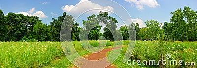 Quiet trail panorama