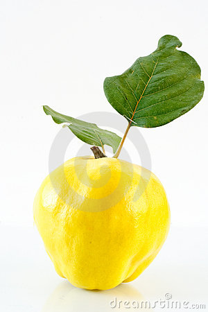 Free Quince Royalty Free Stock Image - 16259326