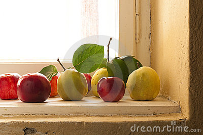 Quince and apples on the window sill