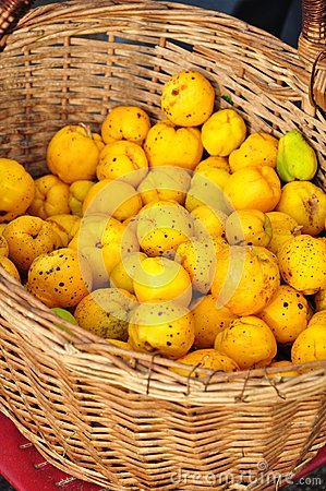 Quince basket