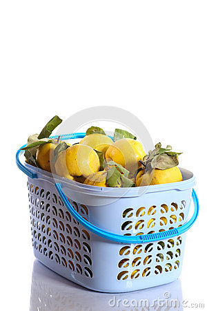 Quince in a basket