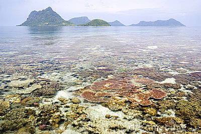 Récif coralien et îles