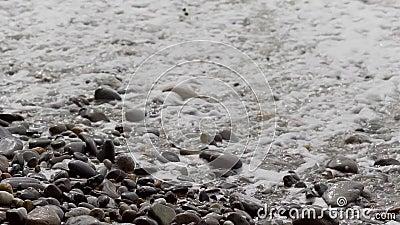 Río limpio con las ondas y la espuma almacen de video