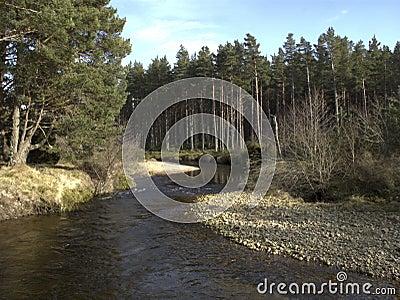 Río que corre en el lago Morlich, Avimore