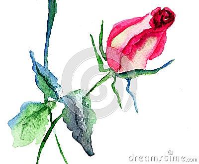 Röd rosa blomma