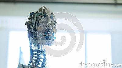 ?r den kvinnliga roboten f?r den futuristiska humanoiden overksam Begrepp av framtid Huvudet av en humanoid robot för humanoid an stock video