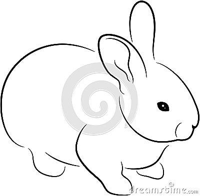 Free Rabbit Stock Photos - 15079003