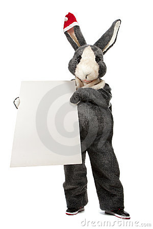Rabbit with blank sheet of paper