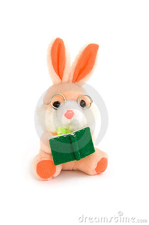 Rabbit with book