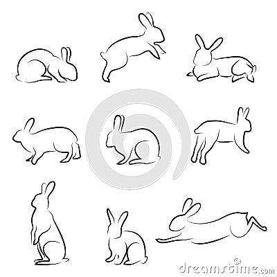 Rabbit drawing set