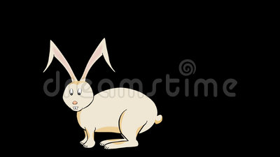 Rabbit Hops-Animated-Transparent Stock Photo