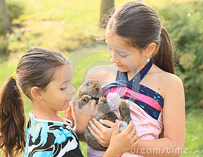 Rabbit in kids hands