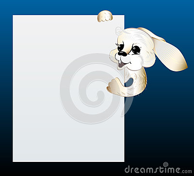 Rabbit looking out of blank sheet of paper.