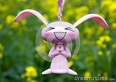 Rabbit  and rape petal