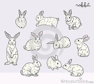 Free Rabbit Set Royalty Free Stock Image - 49909356