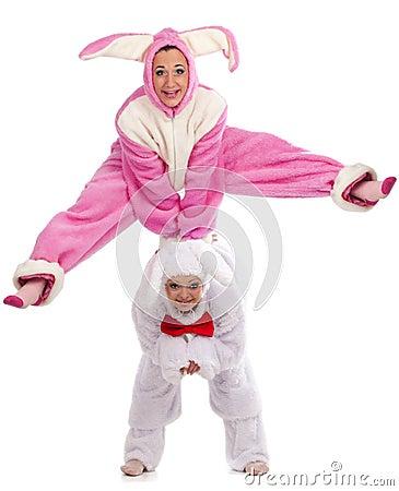 Rabbits having fun