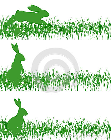 Rabbits on a meadow