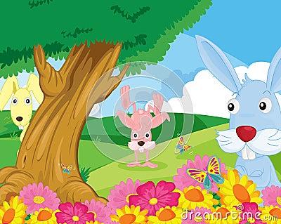 Rabbits in park