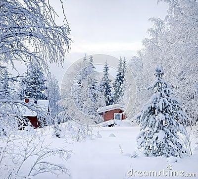 Racconto dell 39 inverno cottage finlandese rosso fotografia - Animali in inverno clipart ...