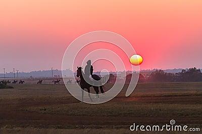 Race Horses Grooms Jockeys Training Dawn Editorial Stock Image