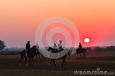 Race Horses Grooms Jockeys Training Dawn Editorial Stock Image
