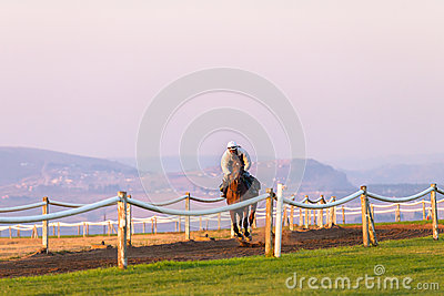 Race Horses Training Dawn Editorial Photography