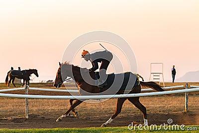Race Horses Training Dawn Editorial Stock Image
